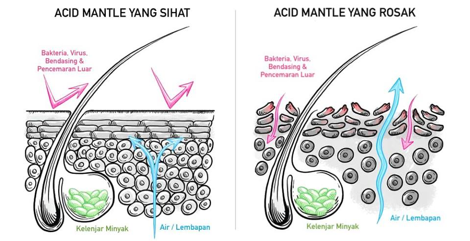 Ilmu Penjagaan Wajah – Acid Mantle